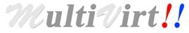 Multivirt-India-Private-Limited